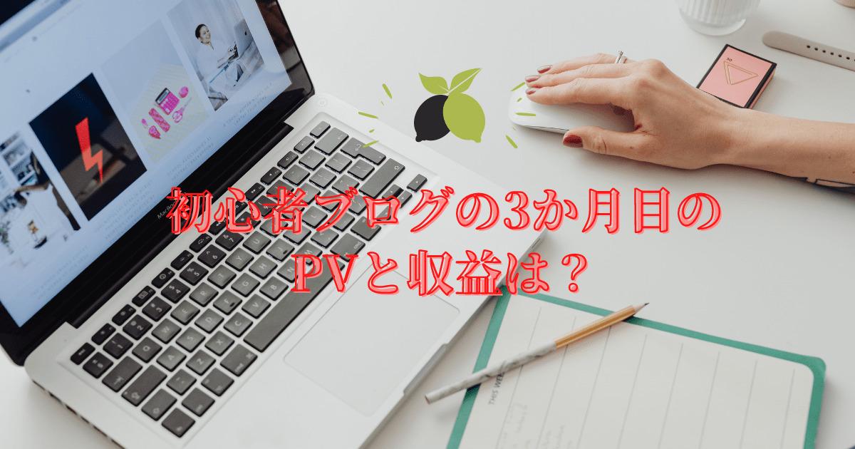 初心者ブログ3か月目のPVと収益